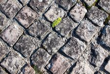 Free Texture Of Paving Stock Photos - 21980983