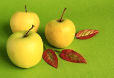 Yellow Apples. Royalty Free Stock Photos