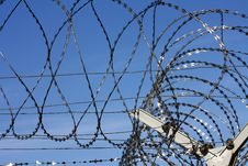Free Barbed Wire Fence Royalty Free Stock Images - 21984429