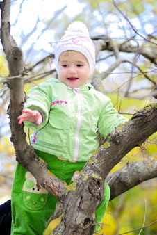 Free Small Girl On Tree By Autumn Royalty Free Stock Photography - 21984837