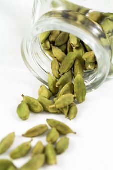 Green Cardamom Stock Image