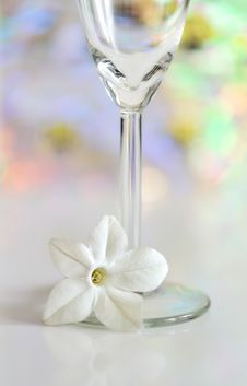 Free Glass With Flower Stock Images - 21995324