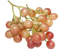 Free Plump Globe Grapes (Vitis Vinifera) Stock Images - 21995504