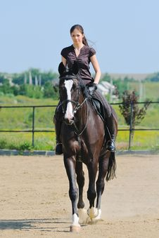 Free Young Girl And Black  Horse Stock Images - 21996224