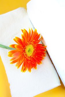 Free Flower And Towel Stock Photo - 21997490