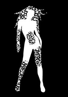 Free Woman Silhouette With Flowers Royalty Free Stock Photography - 21999677