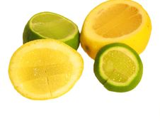 Free Lemmon And Lime Royalty Free Stock Photo - 220625