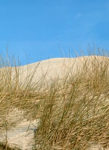 Free Dunes On The Island Royalty Free Stock Images - 225709