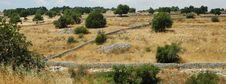 Free Sicilian Landscape3 Stock Images - 226714