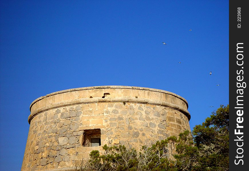 Old Spanish Tower With Birds