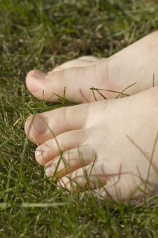 Free Walking Barefoot In Grass Royalty Free Stock Photo - 2207425