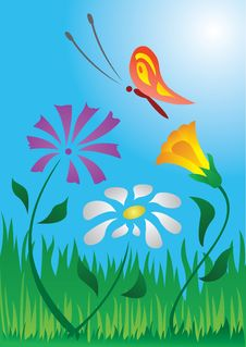 Free Summer Picture Royalty Free Stock Photos - 2209548
