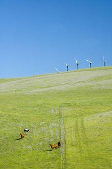 Free Wind Generators In California Stock Image - 2209571