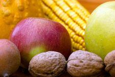 Free Autumn S Harvest Royalty Free Stock Image - 22004536