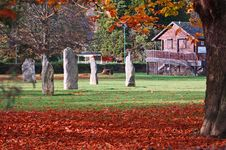 Free Standing Stones In Autumn Royalty Free Stock Image - 22005356