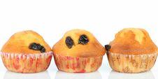Free Muffin Raisin Royalty Free Stock Photo - 22006685