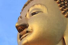 Free Face In The Image Of Buddha Royalty Free Stock Photo - 22008345