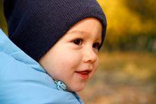 Little Boy In Autumn Park Stock Photography