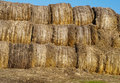 Free Hay Rolls Royalty Free Stock Photography - 22023257