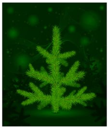 Free Christmas Fur-tree On Green Royalty Free Stock Images - 22022809