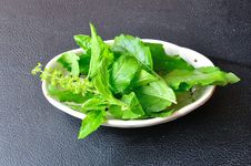Free Closeup Food Ingredient, Basil Royalty Free Stock Photos - 22025508