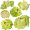 Free Head Of Savoy Cabbage Stock Photography - 22038432