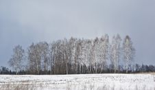 Free Russian Landscape Stock Photography - 22033172