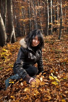 Free Young Woman Sitting On Autumn Forest Stock Photo - 22037120
