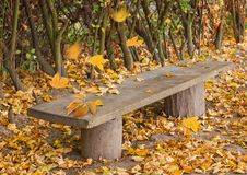 Free Empty Wooden Bench Stock Image - 22039781