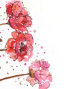 Free Red Flowers Stock Photography - 22046282