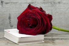 Rose And Playings Cards Royalty Free Stock Photo