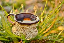 Free Cup Of Tea Stock Photography - 22043212