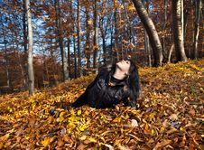 Free Woman Lying In Fallen Leaves Stock Photography - 22049102