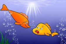 Free Sweet Fish Stock Image - 22050401