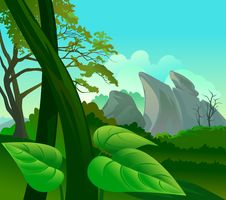 Free Amazon Rain Forest Flora And Fauna Royalty Free Stock Photos - 22053318