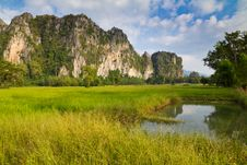 Free Paddy And Mountain Royalty Free Stock Photo - 22055275