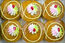Freshly Baked Cup Cakes Royalty Free Stock Photos