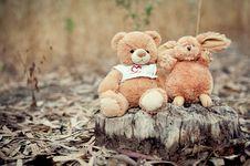 Bear And Rabbit Royalty Free Stock Image