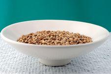 Free Coriander Seeds Stock Photo - 22068730