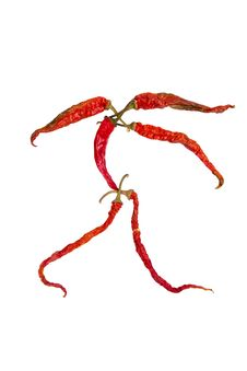 Free Hot Chilli Character Stock Image - 22070331