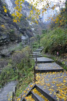 Free Autumnal Mountain Footpath Stock Images - 22071104