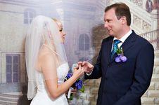Free Elegant Bride Wears Wedding Ring A Happy Groom Stock Image - 22076941