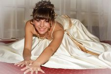 Free A Portrait Of A Beautiful Happy Bride Royalty Free Stock Image - 22078016