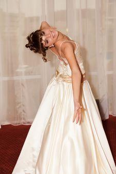 Free A Portrait Of A Beautiful Happy Bride Stock Photo - 22078040