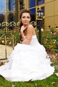 Free A Portrait Of A Beautiful Happy Bride Royalty Free Stock Images - 22078199
