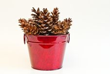 Free Pine Cones In Red Bucket Stock Photography - 22078642