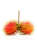 Free Rambutan Royalty Free Stock Photography - 22089257