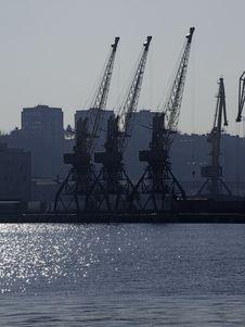 Free Cranes. Stock Photo - 22083900