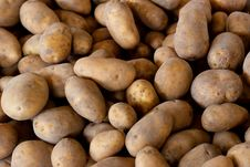 Free Fresh Pick Potatoes At Farmers Market Royalty Free Stock Photography - 22088847