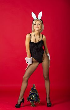 Free Pretty Girl In Studio Stock Photos - 22088923